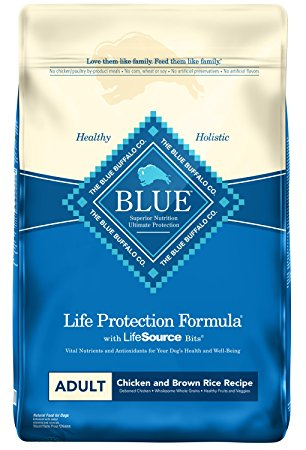 2. Blue Buffalo BLUE Life Protection Formula Adult Dry Dog Food