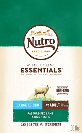 9. Nutro Large Breed Adult Dry Dog Food